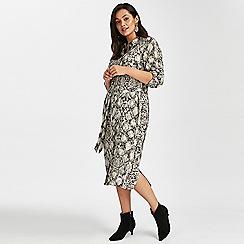 Evans - Grey snake print midi shirt dress
