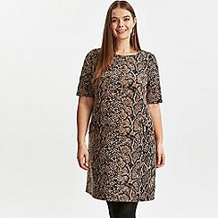 Evans - Brown animal print shift dress