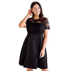 Mela London Curve - Black floral lace print plus size skater dress