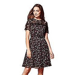 Yumi - Ditsy floral lace dress