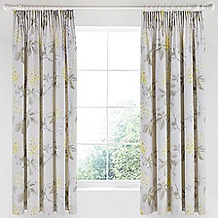 Sanderson - Silver cotton sateen Options 'Chestnut Tree' lined curtains