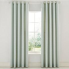 Sanderson - Pale Pink Cotton Panama 'Protea Flower' Lined Curtains