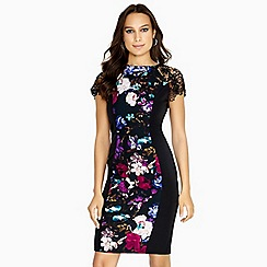 Paper Dolls - Multicoloured vista illusion dress with lace sleeve