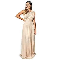 Sistaglam - Blush 'Cindiana' sleeveless embroidered bodice chiffon maxi dress