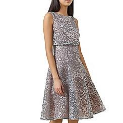 Hobbs - Ivory 'Luisa' dress