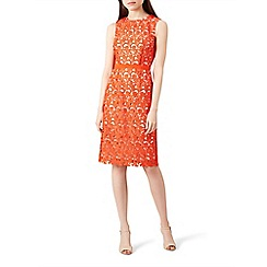 Hobbs - Orange lace 'Keeley' knee length pencil dress