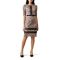 Hobbs - Pink lace 'Penny' shift dress