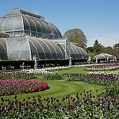 Buyagift - Visit to Kew Gardens and Palace Gift Experience for 2