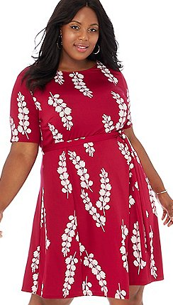 Plus-size - Skater dresses - The Collection - Dresses - Women ...
