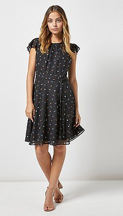 Dorothy Perkins - Billie & Blossom Petite Black Dragonfly Print Skater Dress