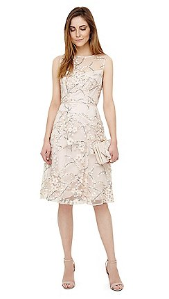 Phase Eight Ivory Sable Embroidered Dress
