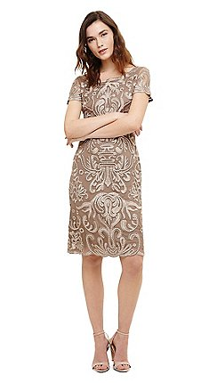 Phase Eight Brown Talia Embroidered Dress