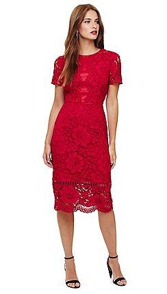 62d290e43dd0 Short sleeves - Shift dresses - Phase Eight - Dresses - Sale | Debenhams