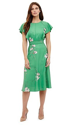 Wedding guest - Fit & flare dresses - Phase Eight - Dresses - Women ...