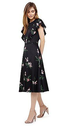 d20a7b19f805 Midi - Prom - Phase Eight - Dresses - Sale | Debenhams