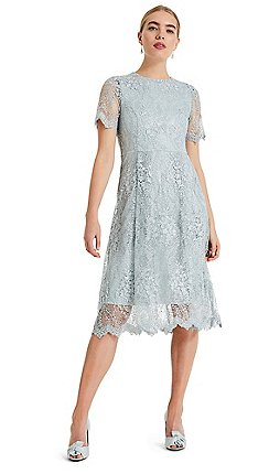 facdb7308f Midi - Wedding guest - Phase Eight - Dresses - Women