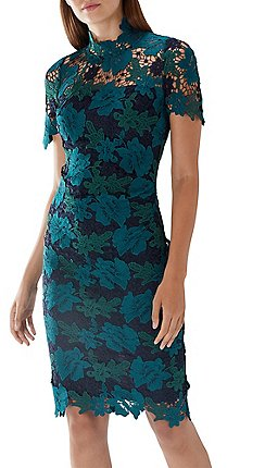 Coast Multicoloured Charlotte Three Tone Lace Dress