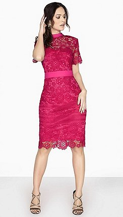 pink paper dolls dresses women debenhams